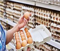 القرش: ضخ كميات كبيرة من البيض للمنافذ على مستوى الجمهورية