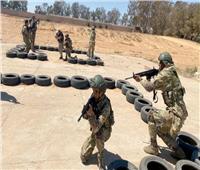 وصول أول مجموعة من مراقبي وقف إطلاق النار الدوليين إلى ليبيا