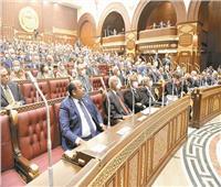 التشريع يكفل حقوق مصر فى مواردها واستدامة استخداماتها