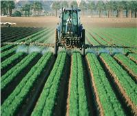 وزارة الزراعة تبدأ خطة ضبط أسعار المحاصيل