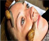 «الحلزون فوائده مذهلة».. أفضل علاج لمشاكل البشرة