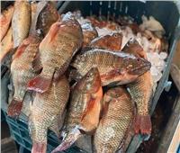 استقرار أسعار الأسماك في سوق العبور.. اليوم الخميس 28 أكتوبر