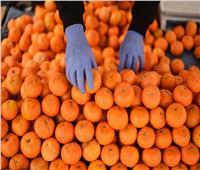 روسيا تحظر استيراد منتجات زراعية من تركيا.. بها مواد ضارة