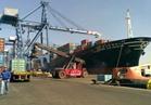 ميناء غرب بورسعيد يستقبل 2036 رأس ماشية
