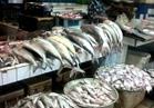 ننشر أسعار الأسماك في سوق العبور