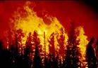 اليونان تطلب مساعدة الاتحاد الأوروبي مع استمرار حرائق الغابات