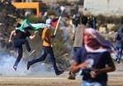 """""""الإعلام العرب"""" يدعو لتكثيف الاهتمام الإعلامي لفضح الانتهاكات الإسرائيلية"""