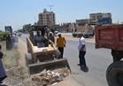 """إزالة القمامة والمخلفات بطريق """"المحلة - طنطا """""""