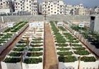 8 فوائد للزراعات المنزلية فوق الأسطح ..تعرف عليها