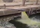 فيديو..مزارع سمكية تتغذى على مياه الصرف الصحي بأسوان