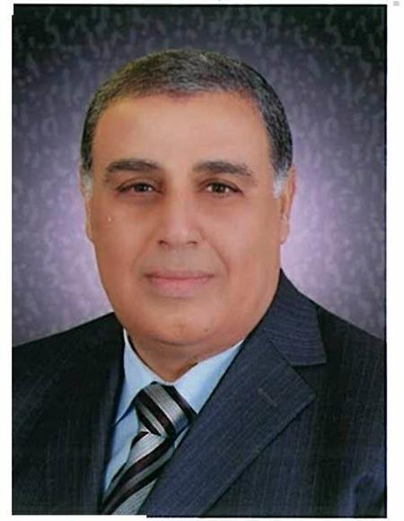 ابراهيم الشحات عضو المجلس التصديري للكيماويات