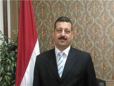 د.أيمن حمزة المتحدث باسم وزارة الكهرباء والطاقة المتجددة