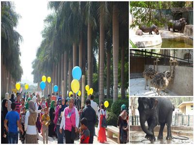 فسح البسطاء في عيد الأضحى.. 7 حدائق ومتنزهات «جاهزة» لاستقبال الزائرين