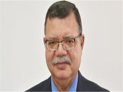 المتحدث باسم وزارة البترول حمدي عبد العزيز