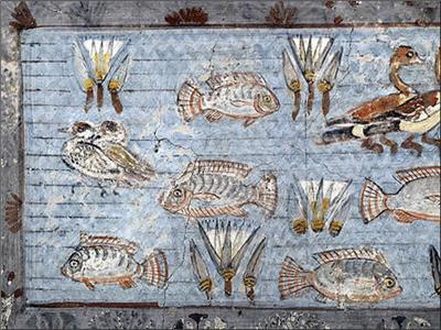 الأسماك كانت حاضرة دائما في نقوش الفراعنة