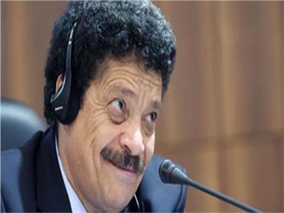 محمد عبد المنعم  شطة