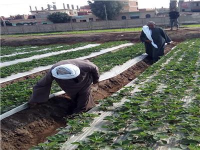 مكافحة الآفات الزراعية
