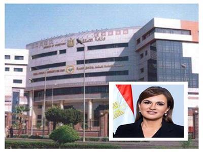 وزارة الاستثمار والتعاون الدولي
