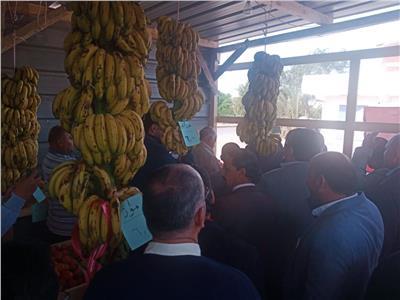 «مستقبل وطن» يطلق منافذ بيع بالمنيا والوادي الجديد وجنوب سيناء