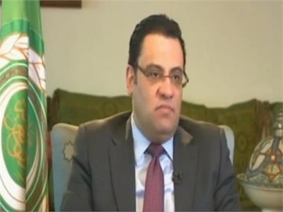 السفير محمود عفيفي