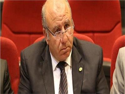 سمير البطيخي وكيل لجنة الشباب والرياضة بمجلس النواب