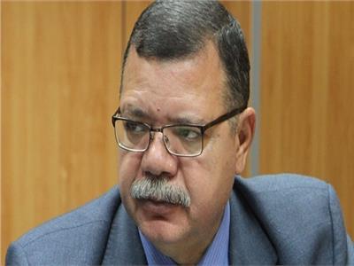 حمدي عبد العزيز متحدث وزارة البترول