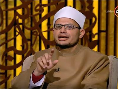 الدكتور محمود البطل