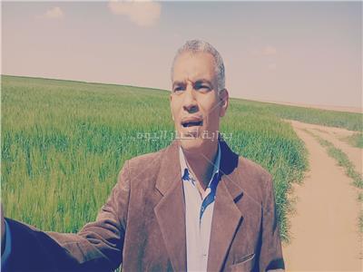 د. أيمن عبد العال
