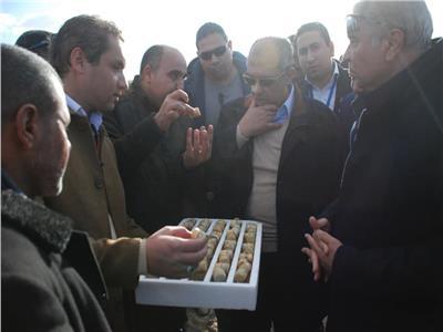 «أبوستيت» يبحث زراعة القصب بالشتلات والري تحت التربة لأول مرة في مصر