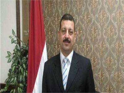 د. أيمن حمزة المتحدث باسم وزارة الكهرباء