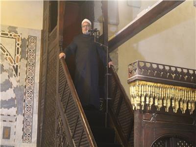 الدكتور إبراهيم الهدهد