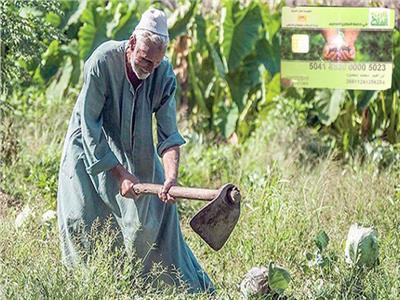 بروتوكول تعاون بين الري والزراعة لحصر وميكنة الحيازة الزراعية «كارت الفلاح»
