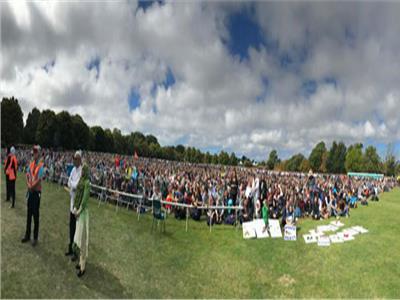 صورة من الجمع اليوم