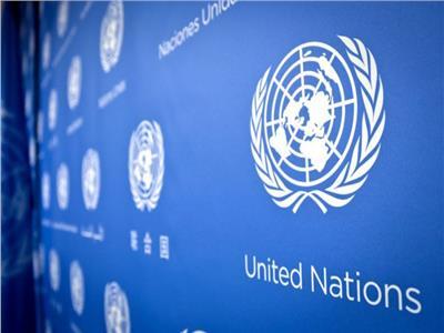 الأمم المتحدة لحقوق الإنسان - صورة أرشيفية