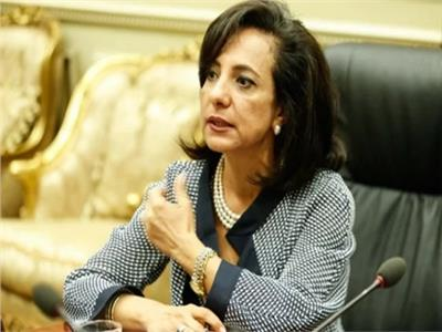 داليا يوسف - عضو لجنة العلاقات الخارجية بمجلس النواب