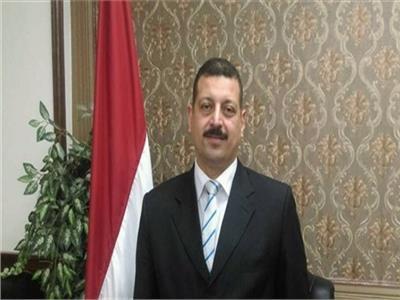 الدكتور أيمن حمزة المتحدث الرسمى لوزارة الكهرباء