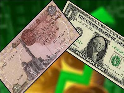 سعر الدولار يفقد 84 قرشا من قيمته أمام الجنيه المصري- أرشيفية