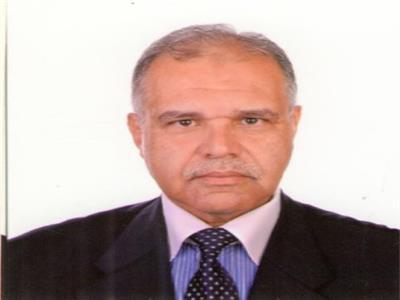 المهندس عادل لطفى رئيس المجلس المصرى للعقار