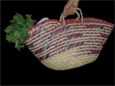 الحرب على البلاستك| «مالها القفة ».. مبادرة للقضاء على الأكياس