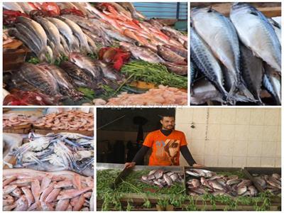 أسعار الأسماك «تشوي» المصريين.. و7 أسباب تشعل بورصة المأكولات البحرية- صورة مجمعة