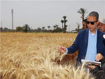 محافظ سوهاج يتفقد حقول القمح