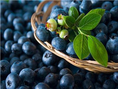 التوت الأزرق يجنبك الإصابة بأمراض القلب