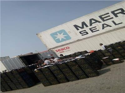 اثناء تفتيش الحاويات بميناء دمياط