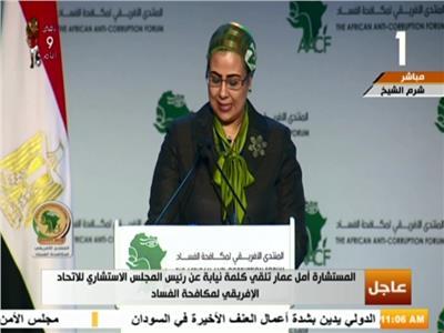 المستشارة أمل عمار عضو المجلس الاستشارى الأفريقى لمكافحة الفساد