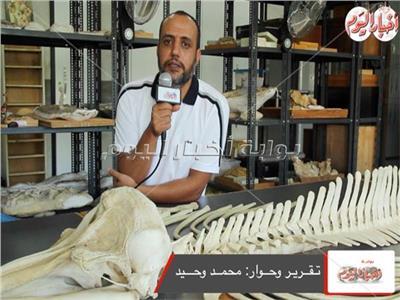 الدكتور هشام سلام الأستاذ المساعد بقسم الجيولوجيا جامعة المنصورة