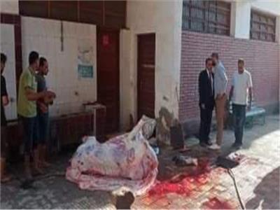 لحظة ذبح اضحية داخل مدرسة ببنها
