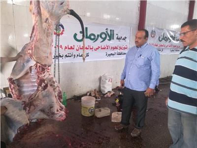 «أضحيتك فرحة ليك وليهم».. مبادرة لتوزيع اللحوم على الفقراء بالبحيرة