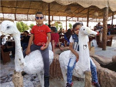 حدائق الحيوان بالوادي الجديد