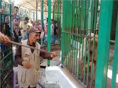 40 الف زائر لحديقة الحيوان حتى الآن  في رابع أيام العيد