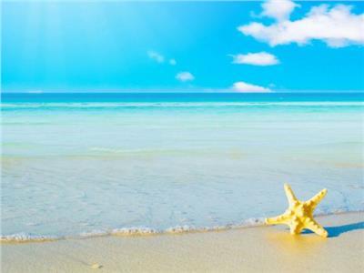 صورة موضوعية لشواطىء مرسى علم